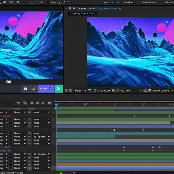 Short Master VIDEO EDITING & MOTION GRAPHIC (1)
